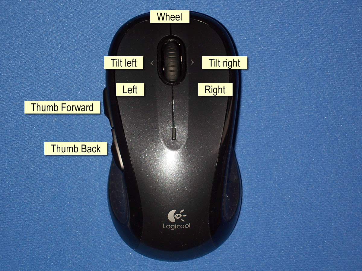 Driver mouse fellowes thumb